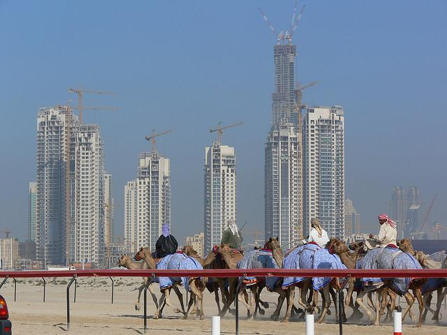 Camel race in front of the Dubai towers_criminalintent_flickrcc