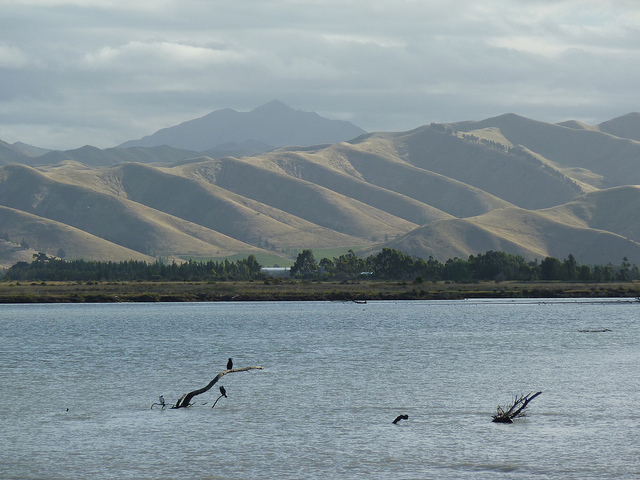 new zealand via flickr by dret