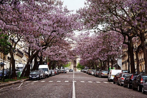 Top 5 Cheap and Beautiful Springtime Cities