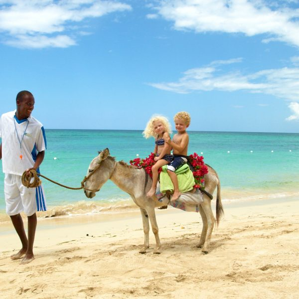 Battle of the Islands – Best Canary Island for Families