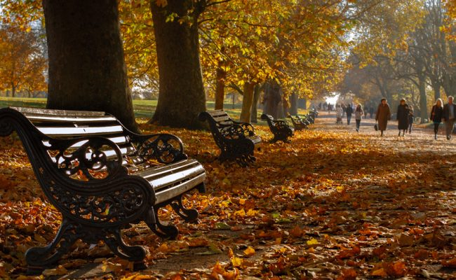Travel Checklist: Packing for Autumn