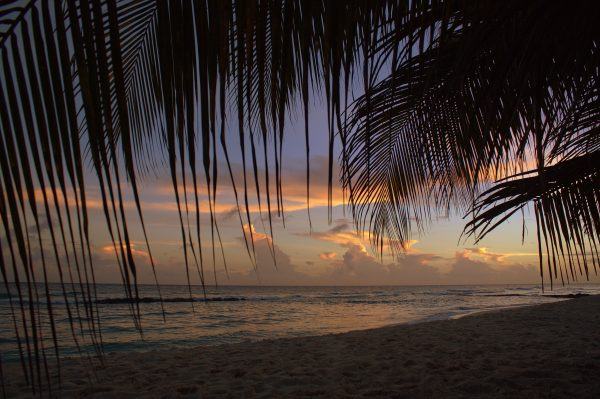 How to Plan the Ideal Caribbean Holiday