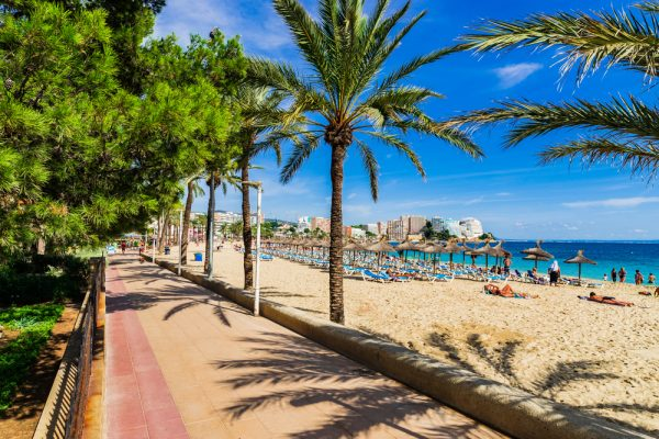 Why choose the HSM Canarios Park in Majorca?